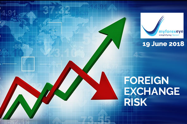 What is Foreign Exchange Risk Exposure?
